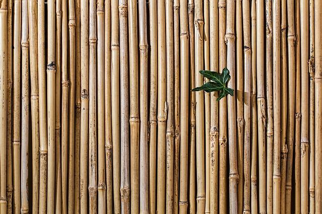 Dekoratív bambusz kerítés